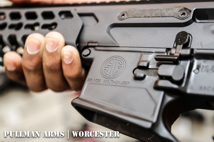 pullman-arms-sig-3